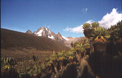 Mt Kenya from Teleki Valley